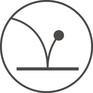 Icon pro downside